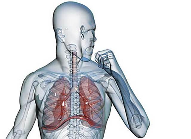 Кашель с мокротой: виды, причины, диагностика и способы лечения, профилактика