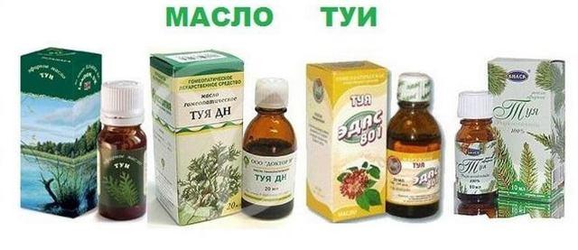 Масло эвкалипта от насморка и гайморита: применение для лечения