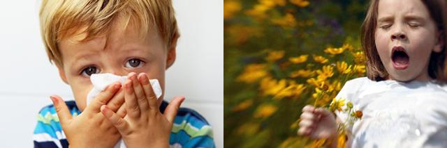 Хронический ринит у ребенка: симптомы и лечение
