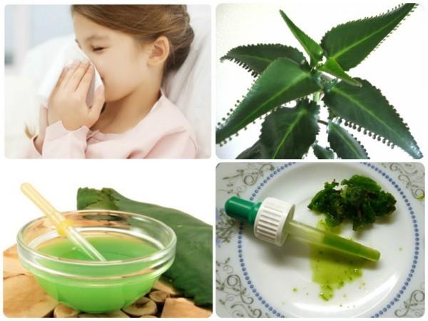 Народные средства от насморка для детей: лечение в домашних условиях быстро