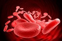Анизоцитоз эритроцитов: что означает этот показатель (норма и повышен)