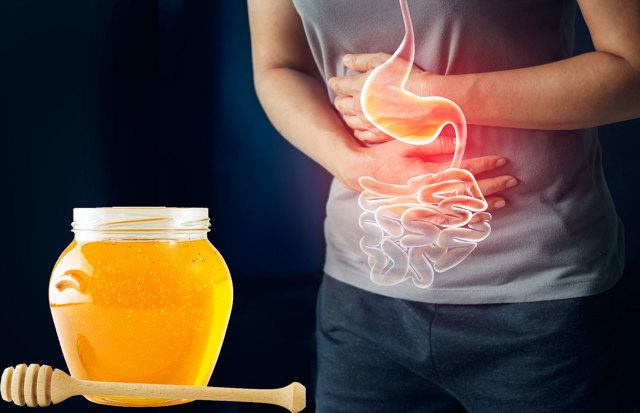 Мед для желудка и кишечника: какой полезен и как употреблять, рецепты
