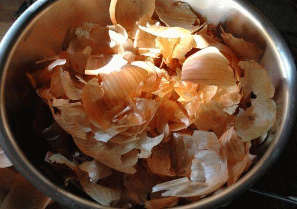 Луковая шелуха для месячных: отзывы, рецепт отвара при задержке