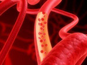 Как проходит обновление крови у женщин и мужчин и как его рассчитать