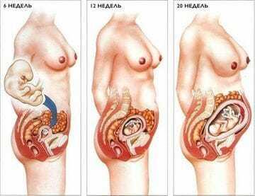 Почему колит в области матки