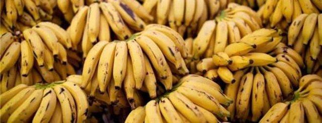 Бананы при язве желудка: польза, каков вред, правила выбора и употребления