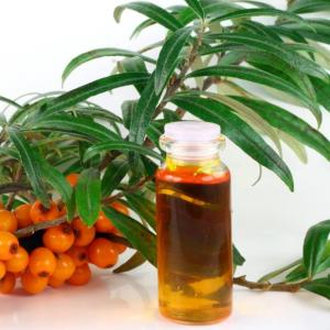 Облепиховое масло при гастрите: польза, как принимать при разных формах