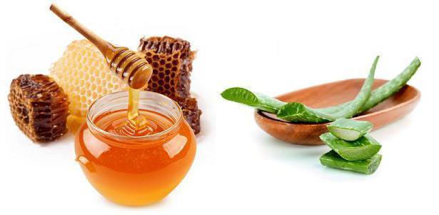 Мед при гастрите желудка: можно ли, лечебные эффекты, рецепт с алоэ, комбинация с молоком, полезен ли, отзывы о лечении