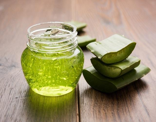 Алоэ с медом для желудка: как сделать лекарство, рецепты средств для лечения