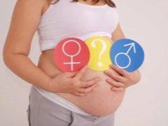Как узнать пол ребенка при беременности