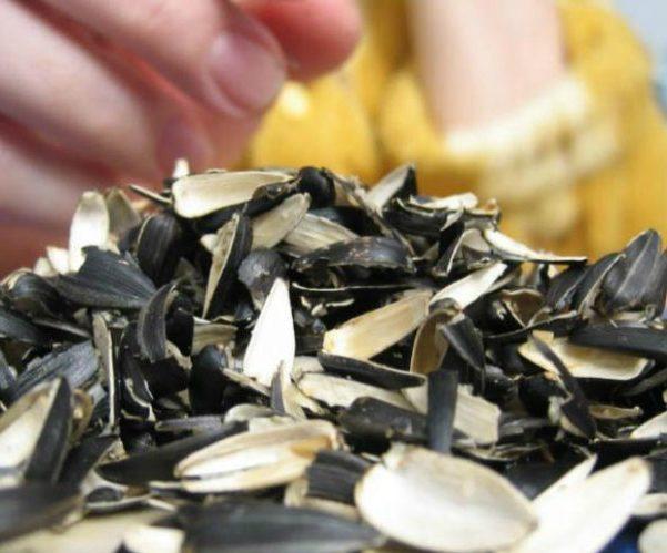 Можно ли при гастрите семечки: правила употребления, полезные свойства