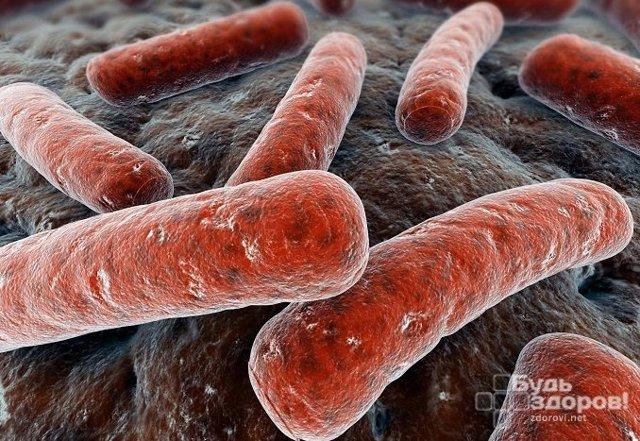 wbc анализ крови и его расшифровка, норма показателей